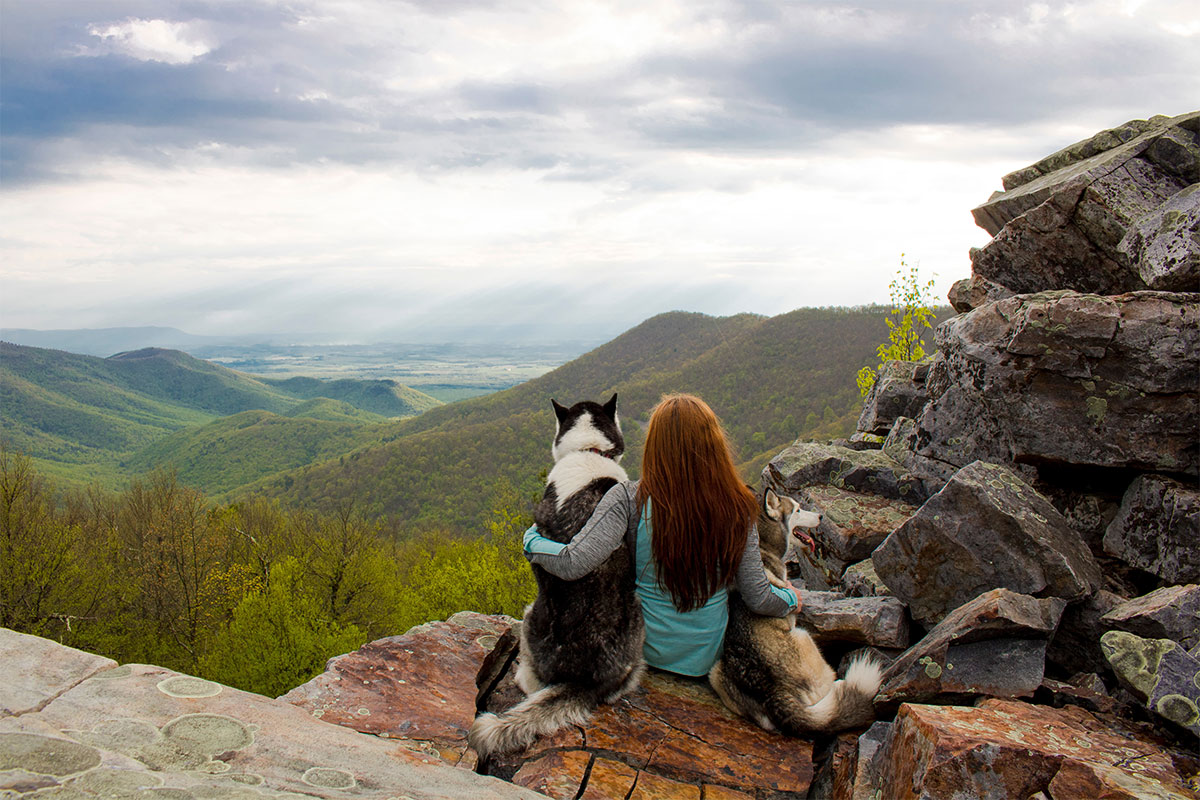 Red haired girl and two dogs look over landscape from mountaintop
