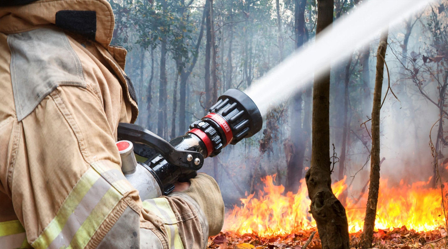 Firefighter holding hose and putting out forest fire