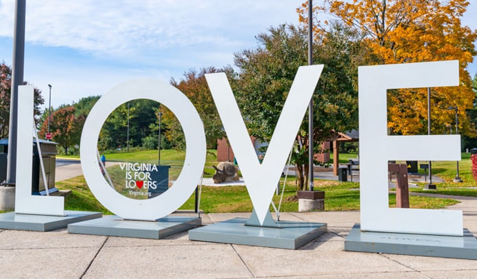 Virginia is for Lovers LOVE art